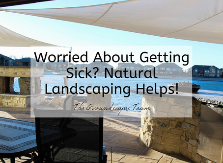 Worried About Getting Sick? Natural Landscaping Helps!