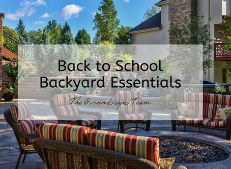 Groundscapes: Back to School Backyard Essentials!