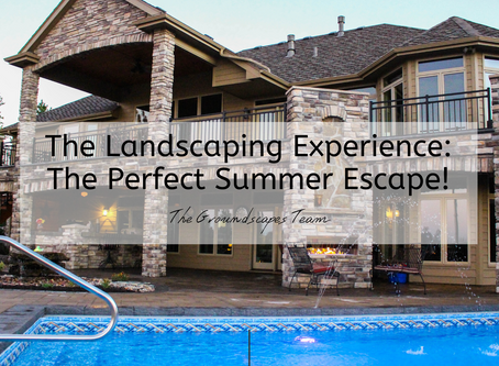 The Landscaping Experience: The Perfect Summer Escape!