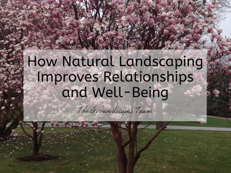 How Natural Landscaping Improves Relationships and Well-Being