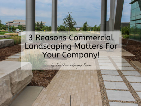 3 Reasons Commercial Landscaping Matters For Your Company!