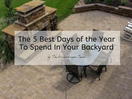 The 5 Best Days of the Year To Spend In Your Backyard