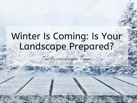 Winter is Coming: Is Your Landscape Prepared?