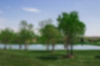 Commercial Environment 4.jpg