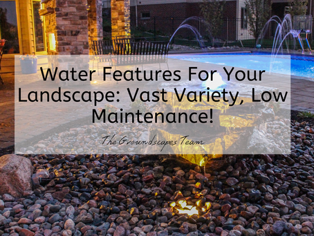 Water Features For Your Landscape: Vast Variety, Low Maintenance!
