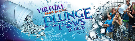 Virtual-Plunge-For-Paws-in-Need-3__WEBSI