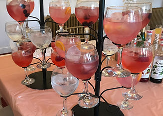 Gin Tasting Night at your Home