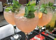 Gin Tasting Night Essex