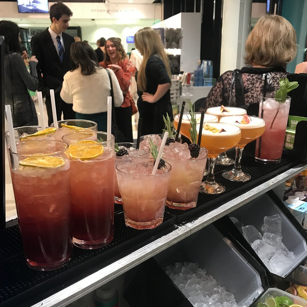 Cocktails for Corporate Christmas Party at the Museum of Zoology