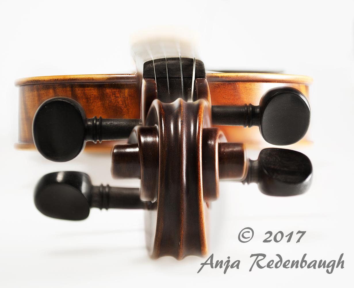 violintop_DSC2028