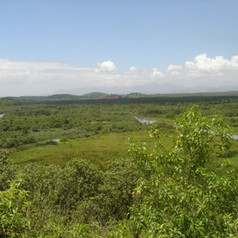 Encontro do Rio Saracuruna com o Rio Inh