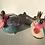 Thumbnail: Aaen & Nielsen - Paradisfugle