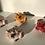 Thumbnail: Aaen & Nielsen - Royal Frogs Small pink/orange/red
