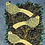 Thumbnail: Aaen - Fugle i træer