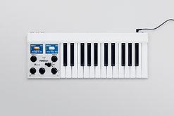 Mellotron_M_0114.jpg