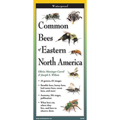 Common Bees of Eastern North America Folding Guide