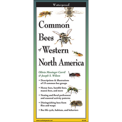 Common Bees of Western North America Folding Guide