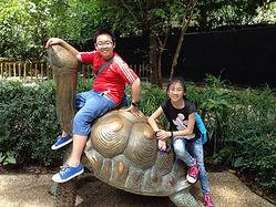 singapore zoo cover pic.jpg