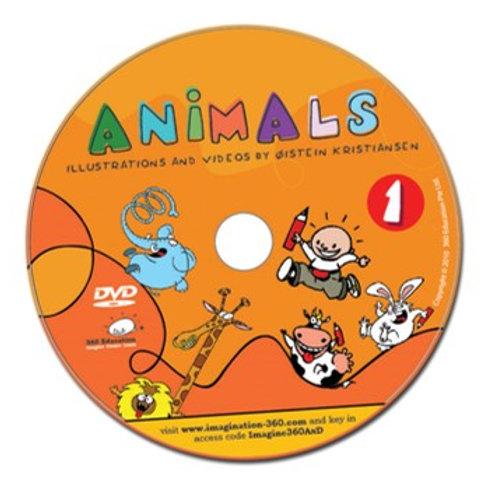 DVD: Animals - Illustrations and Videos by Øistein Kristiansen
