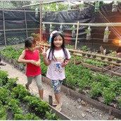 Farming Project Photo (120).jpg