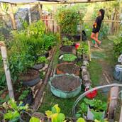 Farming Project Photo (107).jpg