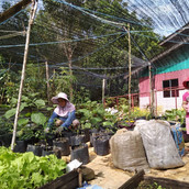 Farming Project Photo (115).jpg
