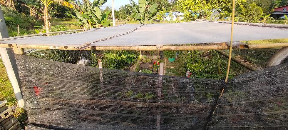 Small Scale Rural Farming