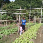 Farming Project Photo (78).jpg