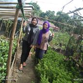Farming Project Photo (123).jpg
