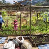 Farming Project Photo (116).jpg