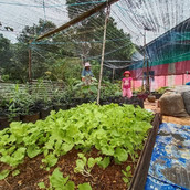 Farming Project Photo (98).jpg