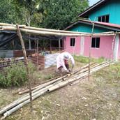 Farming Project Photo (113).jpg