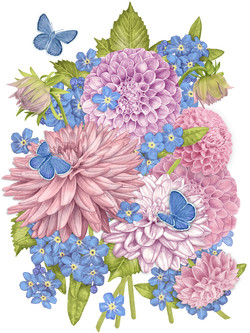 Forget-me-nots and Dahlias