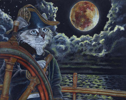 Sea Captain Cat