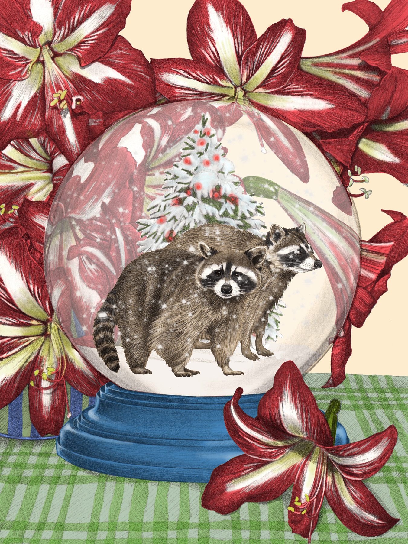 Raccoon Globe