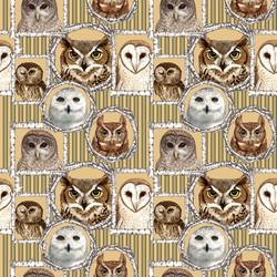 Framed Owls