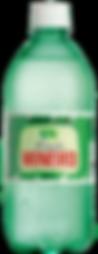 Limão Mineiro PET 600ml