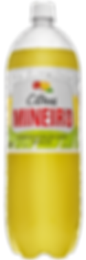 Citrus Mineiro PET 2 litros