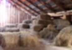 barn_loft_2_by_da_joint_stock-d33acrt.jp