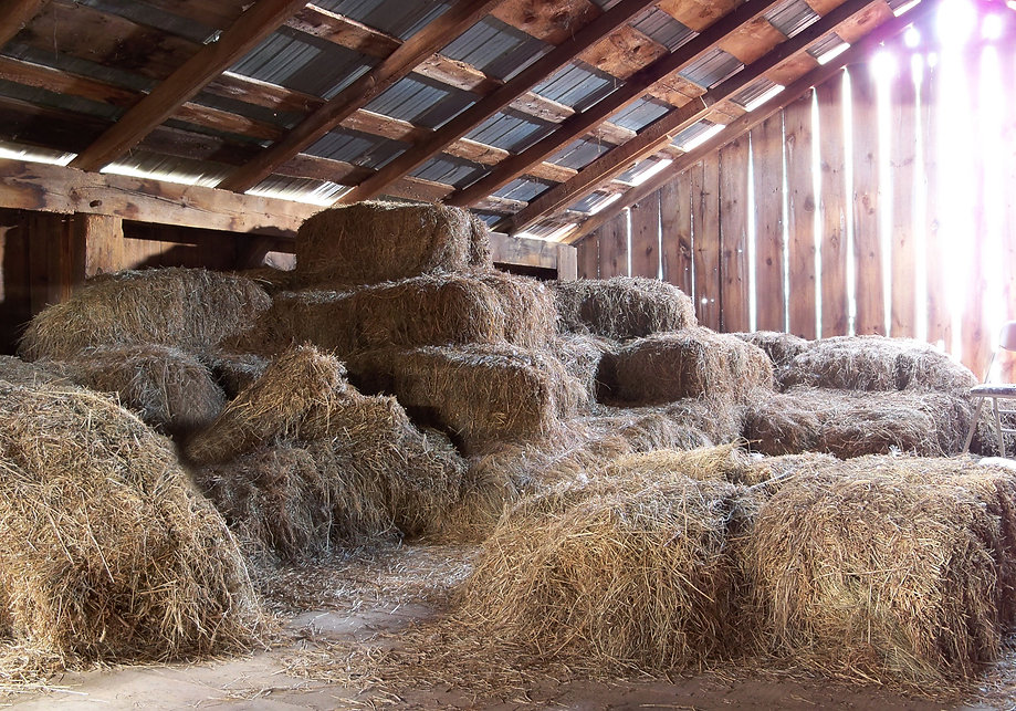 barn_loft_2_by_da_joint_stock-d33acrt.jp