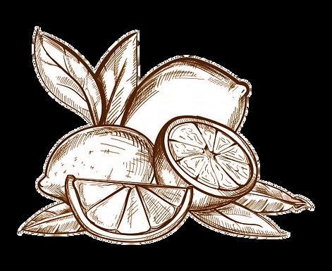 llimona-sipia.png
