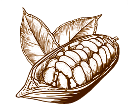 cacao-sipia.png
