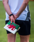 Wales Lacrosse seeks to appoint a CEO