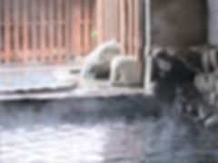 岩風呂2 200228 1000x750.JPG