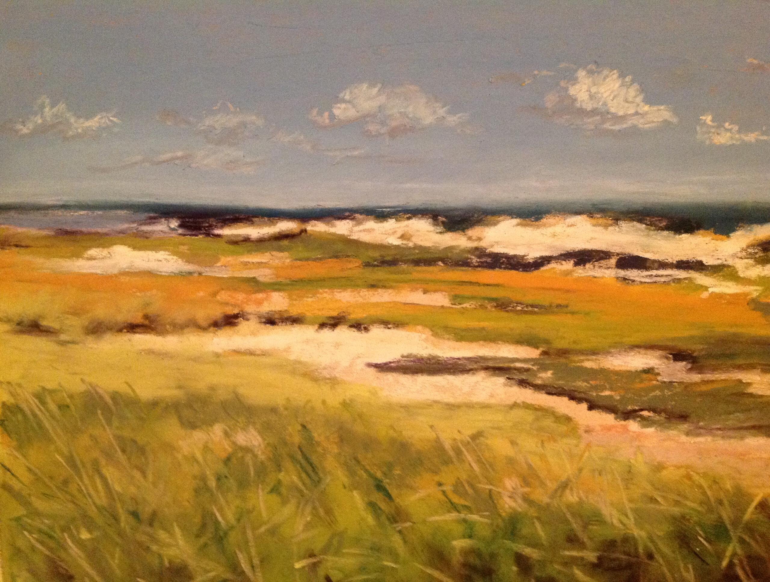 Sandy Neck Vista