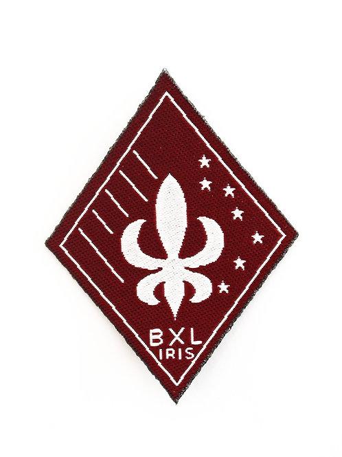Région Bruxelles Iris (BXL IRIS)