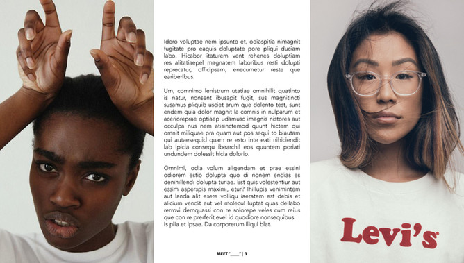 MEET LOREM IPSUM-page-003.jpg