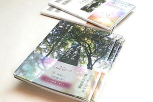 maehara_book_web.jpg