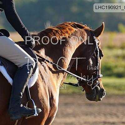 London Horsemanship Club Ring 2