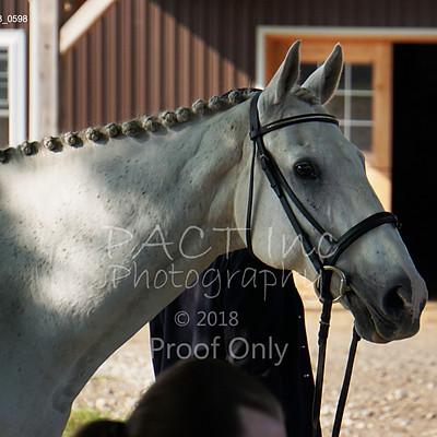 Conestoga CADORA at Cornerstone Equestrian Centre